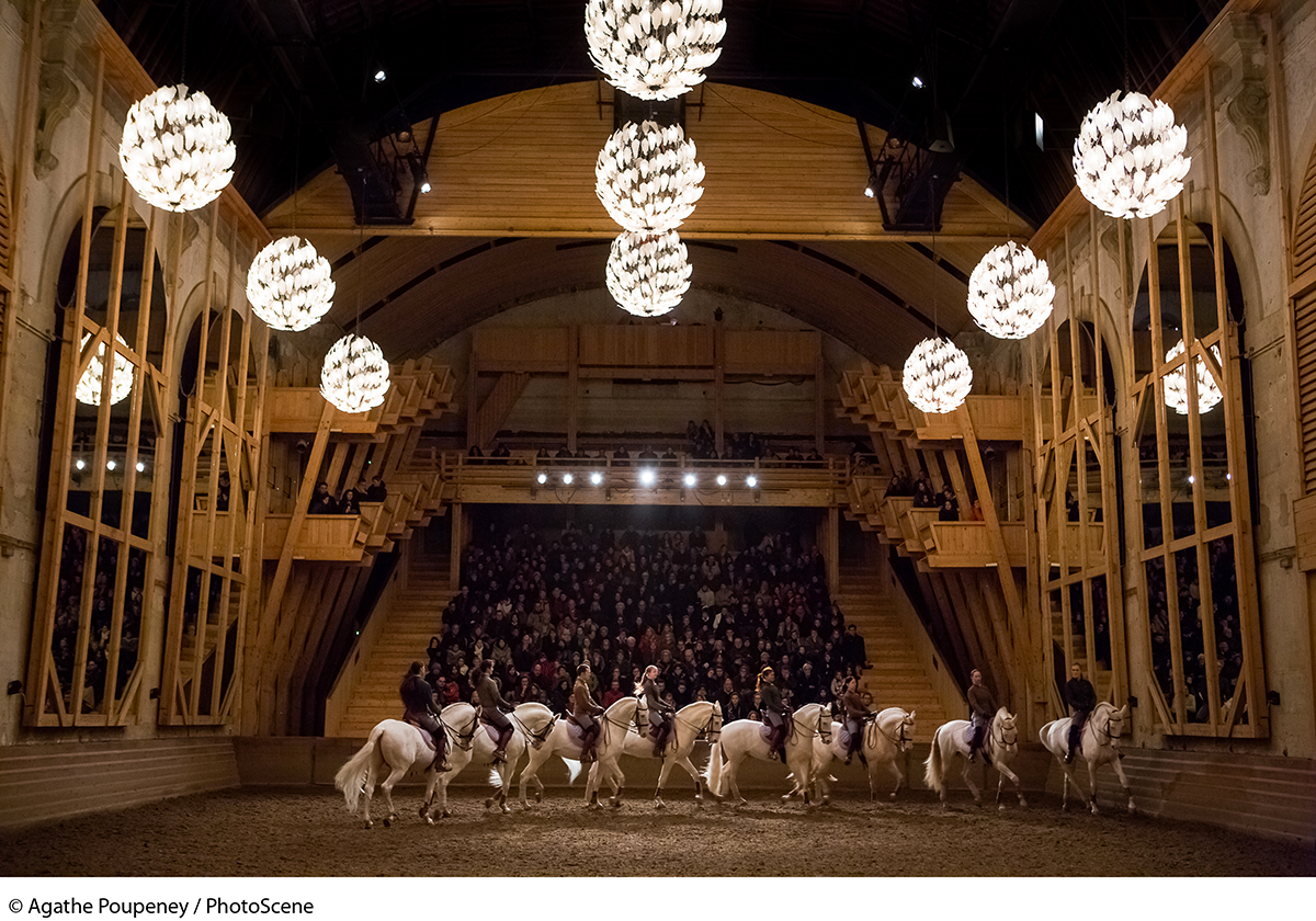 Equestrian academy at Versailles